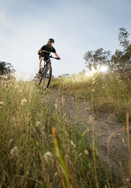 A mountain bike rider heading down a grassy slope