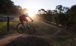A mountain bike rider riding down a trail with the sun on the horizon