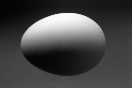 Black and white egg with shading