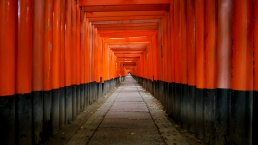 Corridor of red tori gates leading into the distance at Fushimi Inari shrine near Nara Japan