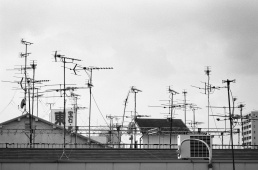 A black and white photograph of a rooftop in Japan covered with tv antennas
